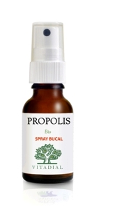 PROPOLIS Action Renf. BIO Spray 20 ml